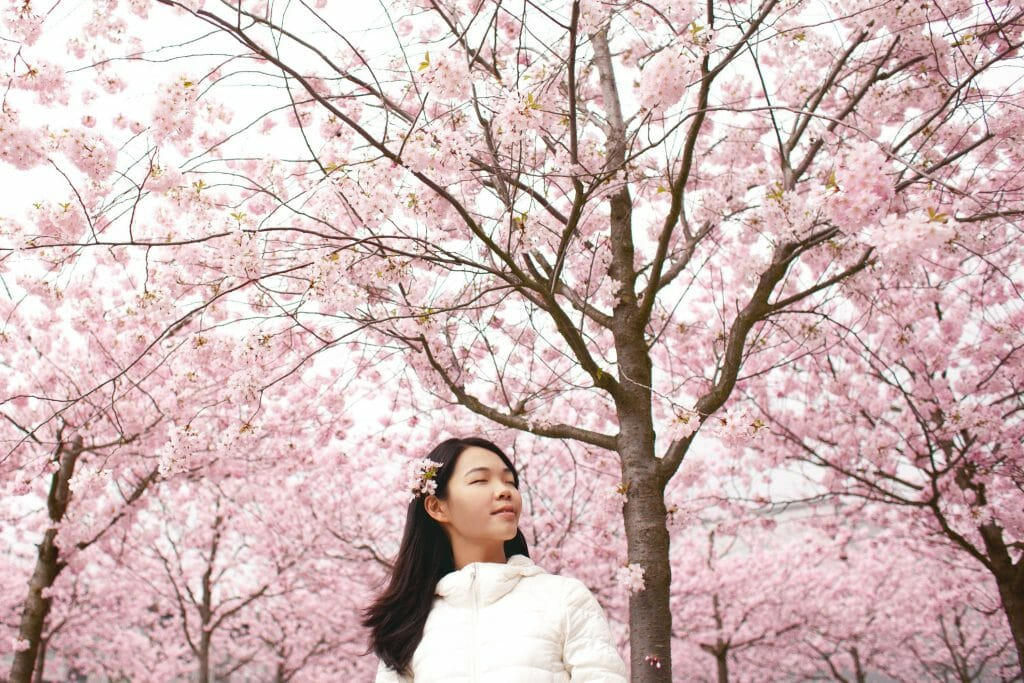 Woman standing beneath cherry blossom tree thinking about bad credit loans